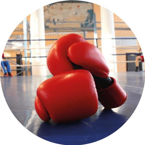 Box y Artes Marciales